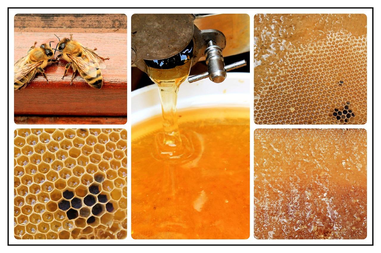 العسل على الريق