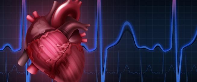 قياس نبضات القلب باليد