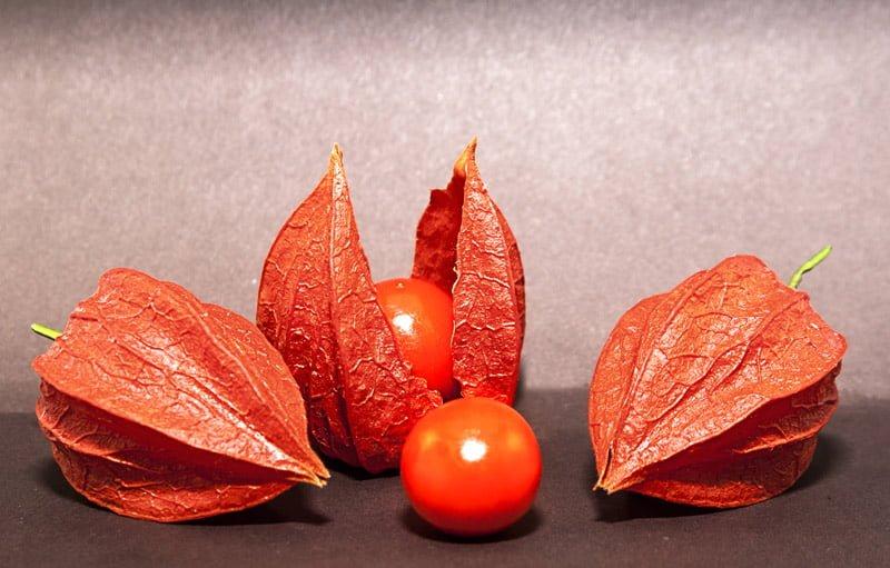 ما هي نبتة الاشواجندا